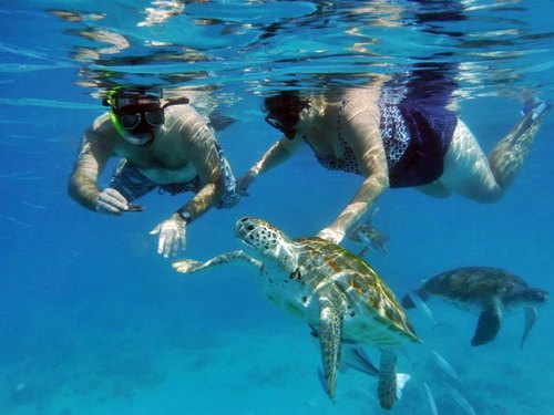 Activities to do in Marsa Alam