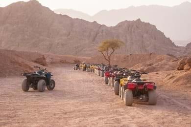 Tour de Safari por Quad Bike